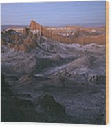View Of The Valley Of The Moon Wood Print by Joel Sartore