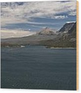 View Of Wild Goose Isl. Wood Print