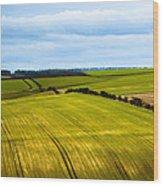 View On Fields Wood Print