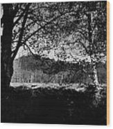 View Through The Trees Wood Print