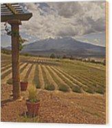 View Toward Mt Shasta Horizontal Wood Print