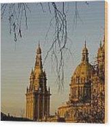Views Of Palau Nacional De Catalunya Wood Print