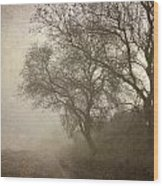 Vigilants Trees In The Misty Road Wood Print