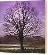 Village Green Tree Wood Print