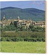 Village Of Lourmarin. Luberon. Vaucluse Wood Print