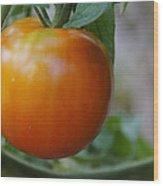 Vine Ripe Tomato Wood Print