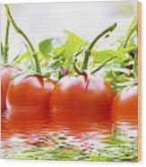 Vine Tomatoes And Salad With Water Wood Print