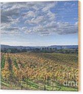Vines In Fields Wood Print