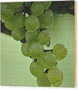 Vineyard Grapes I Wood Print