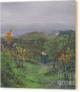 Vineyard Path Wood Print