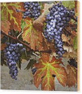 Vineyard Splendor Wood Print