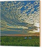 Vineyard Sunset I Wood Print