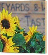 Vineyards And Winery Tastings Wood Print