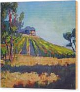 Vineyards At Sarver Wood Print