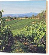 Vineyards In The Yarra Valley, Victoria, Australia Wood Print