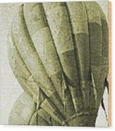 Vintage Ballooning II Wood Print