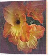 Vintage Gladiola  Wood Print