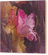 Vintage Gladiolas Wood Print by Richard Cummings