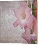 Vintage Gladioli Wood Print by Jane Rix