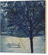 Vintage Park Wood Print
