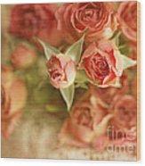 Vintage Peaches N Creme Spray Roses Wood Print by Susan Gary