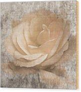 Vintage Rose IIi Wood Print