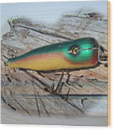 Vintage Saltwater Fishing Lure - Masterlure Rocket Wood Print