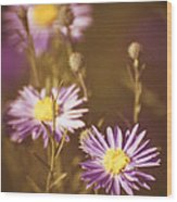 Vintage Violet  Wood Print