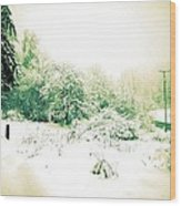 Vintage Winter Photograph Wood Print