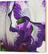 Violet Edges Wood Print