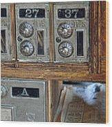 Virginia City Post Office Box Wood Print