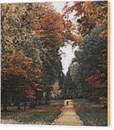 Virginia Water Wood Print