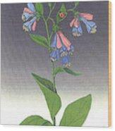Viriginia Bluebells Wood Print