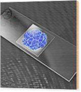 Virus On Microscope Slide Wood Print by Laguna Design