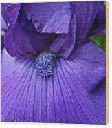 Vision In Violet Wood Print