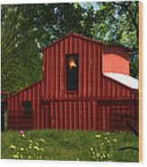 Visionary Retreat Wood Print by Elizabeth Hart