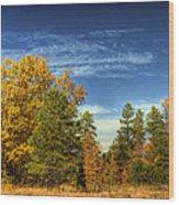 Visions Of Fall  Wood Print