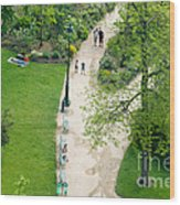 Visitors In The Champ De Mars Wood Print