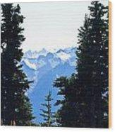 Vistas Along The Trail Wood Print