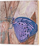 Visualization Butterfly Wood Print