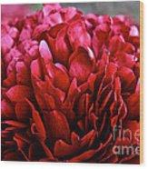 Vivid Red Wood Print