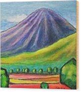 Volcan Mombacho Nicaragua Wood Print