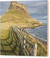 Volcanic Mound Called Beblowe Craig Wood Print by John Short