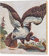 Vulture Attacking A Snake Wood Print
