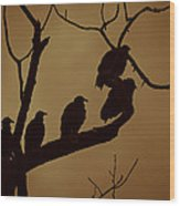 Vulture Island Wood Print