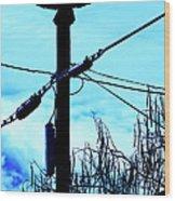 Vulture On Phone Pole Wood Print