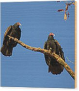 Vultures On A Branch Wood Print