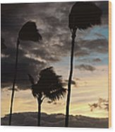 Wa'alaea Sunrise Wood Print