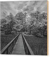 Wadmalaw In Ir Wood Print