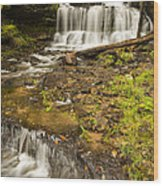 Wagner Falls 4 Wood Print